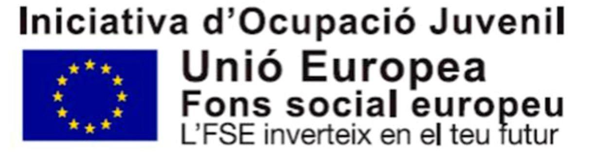 Iniciativa d'Ocupació Juvenil. Emblema de la Unió Europea, Fons social europeo, L'FSE inverteix en el teu futur.